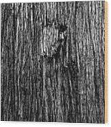 Bark Mark Wood Print