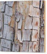 Bark On A Tree In The Desert In Sedona Wood Print