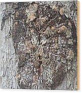 Bark Viii Wood Print