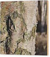 Bark1 Wood Print