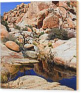 Barker Dam Big Horn Dam By Diana Sainz Wood Print