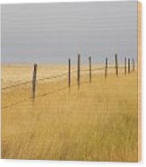 Barley Field And Fenceline, Southern Wood Print