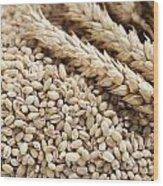 Barley Grains And Stalks Wood Print