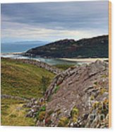 Barmouth Estuary Wood Print
