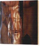 Barmuda Metallic  2 Wood Print