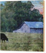 Barn 30 Pastel Wood Print