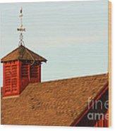 Barn-3684 Wood Print