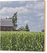 Barn And Corn Wood Print