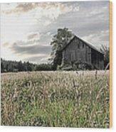 Barn And Grass Wood Print