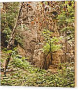Barn Bluff Wood Print