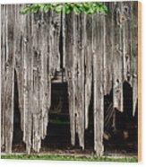 Barn Boards - Rustic Decor Wood Print