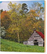 Barn Colors Wood Print