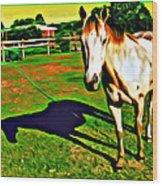 Barn Horse Wood Print
