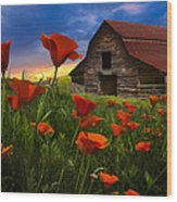 Barn In Poppies Wood Print