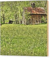 Barn In Wild Turnips Wood Print
