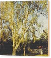 Barn Landscape Wood Print
