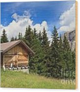 barn on Alpine pasture Wood Print