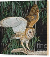 Barn Owl Alights Wood Print
