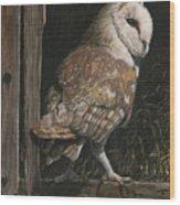 Barn Owl In The Old Barn Wood Print