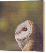 Barn Owl Photo Millie Wood Print