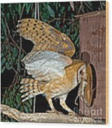 Barn Owl With Prey Wood Print