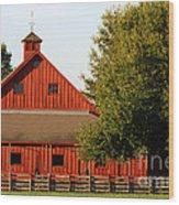 Barn South-3586 Wood Print
