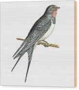 Barn Swallow, Artwork Wood Print