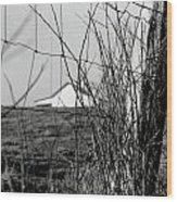 Barn Through Fence Wood Print