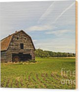 Barn On The Field Wood Print