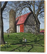 Barn With Silo In Springtime Wood Print