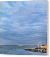 Barnegat Lighthouse Wood Print by Olivier Le Queinec