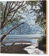 Barnes Creek At Lake Crescent - Washington Wood Print