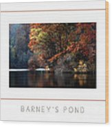 Barney's Pond Poster Wood Print