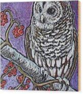 Barred Owl And Berries Wood Print