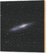 Barred Spiral Galaxy Ngc 55 Wood Print