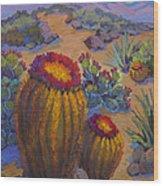 Barrel Cactus In Warm Light Wood Print