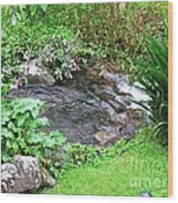 Barriles Small Stream Wood Print