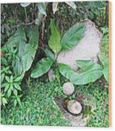 Barriles Stone Work Wood Print