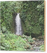 Barriles Waterfall Wood Print