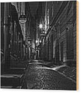 Bars In The Alley Wood Print