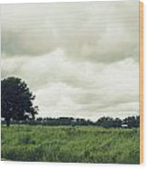 Bartow Highway Wood Print