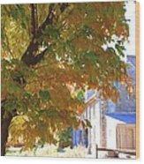 Bartram Orange Wood Print