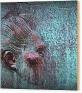 Bas Relief Profile Of Female Head Wood Print
