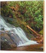 Base Of Laurel Falls Wood Print