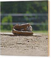 Baseball - America's Game Wood Print