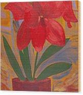 Basement Amaryllis Wood Print