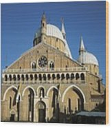 Basilica Of Saint Anthony Of Padua Wood Print