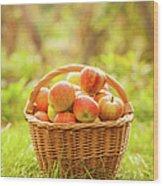 Basket With Apples Wood Print