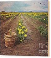 basket with Daffodils Wood Print