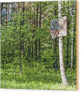 Basketball Forest Court Wood Print